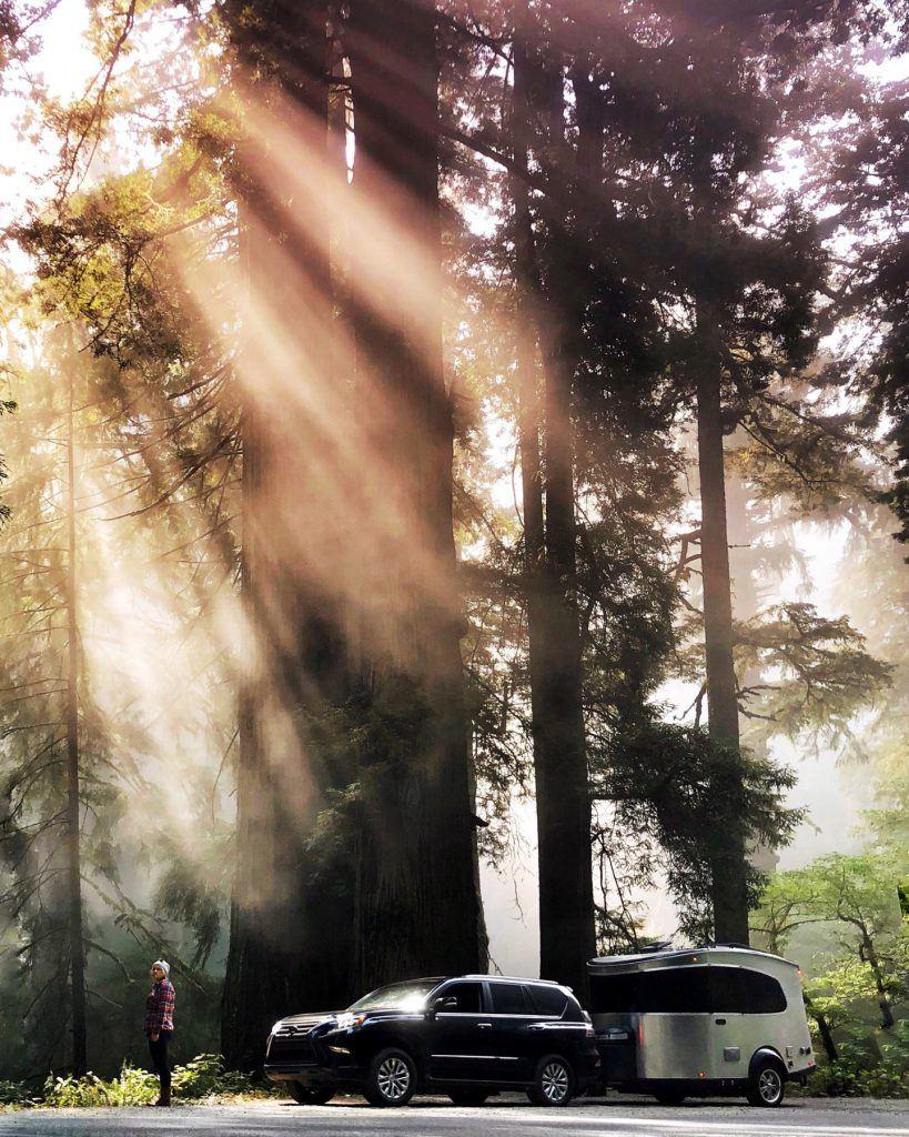 Airstream Basecamp Nature Woods SUV Sunlight