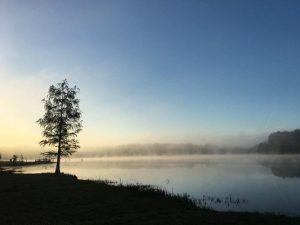 laura-s-walker-state-park