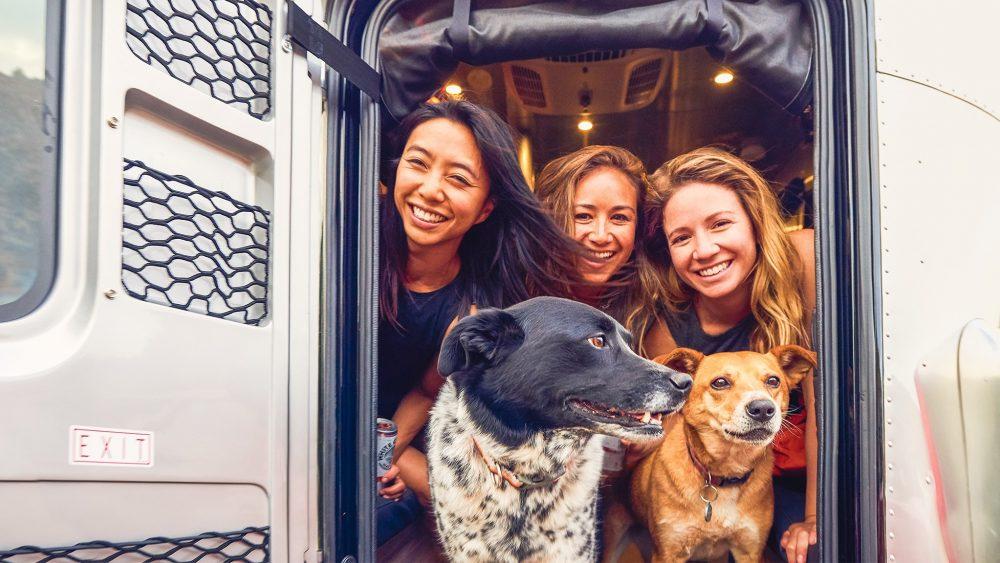 Airstream Basecamp Pets Travel